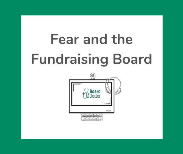 Fear and the Fundraising Board product image